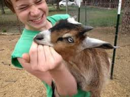 goat-fail to release 3.jpg