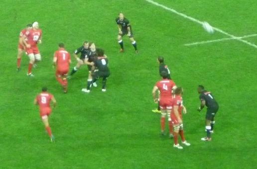 Reds v Sharks Banner2