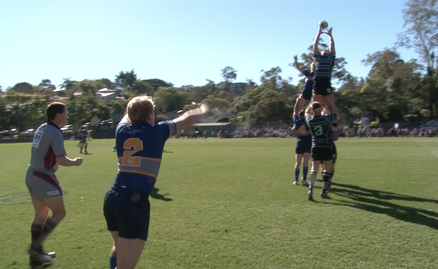 ACGS Lineout