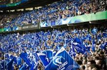 leinster heineken cup crowd flags
