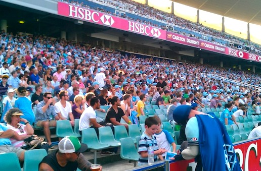 waratahs crowd