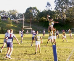 Lineout won against the throw
