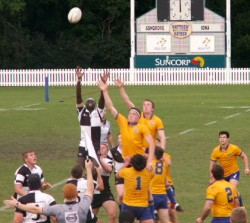 Yak contesting the lineout