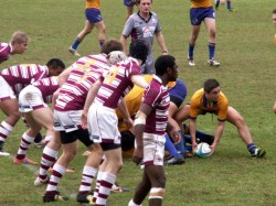 Ashgrove on the attack.