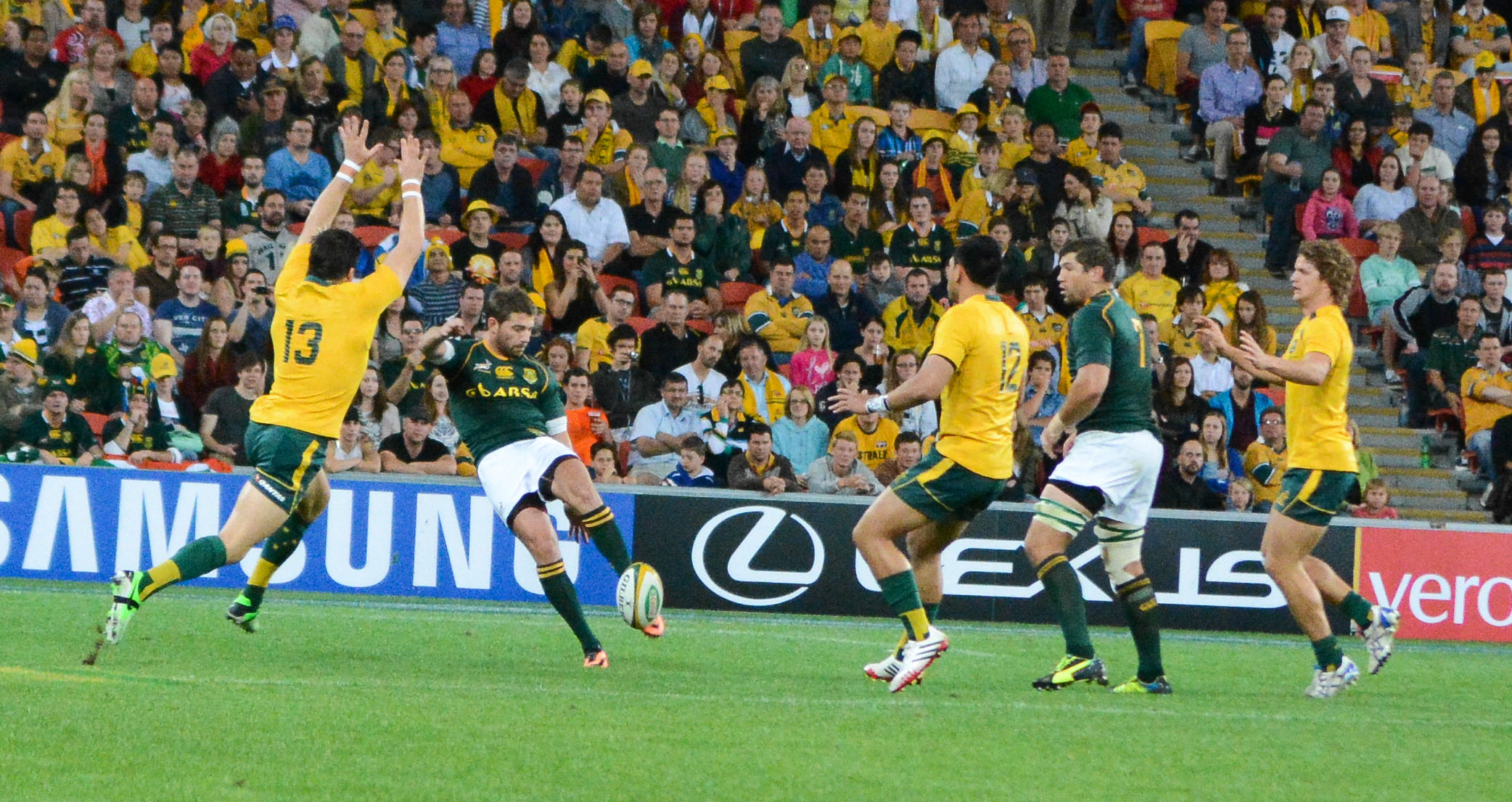 what you need to know about the springboks in 2014 green