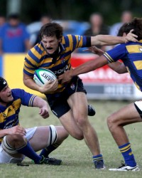 Dargaville busts a tackle