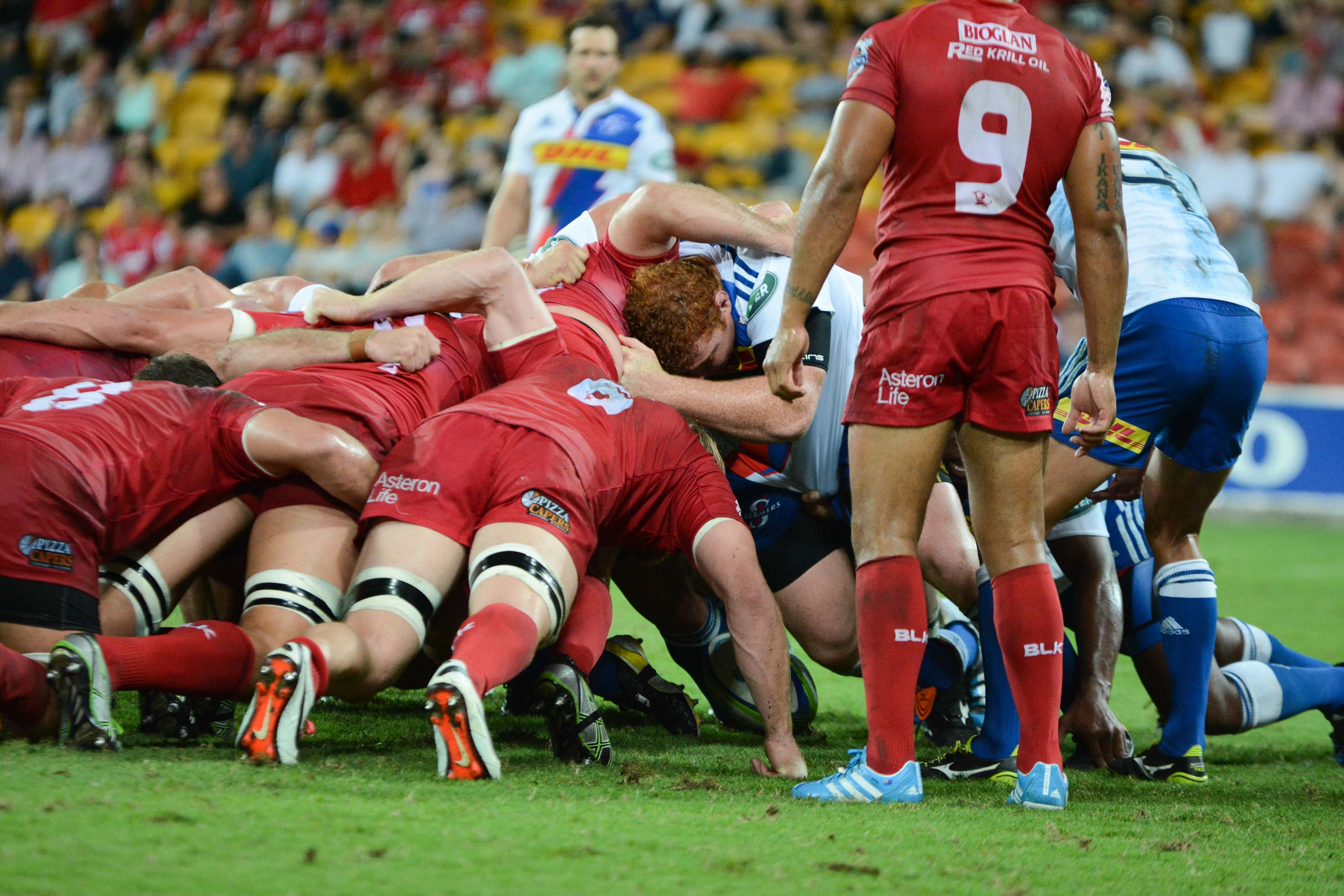 Reds v Stormers Scrum 2014