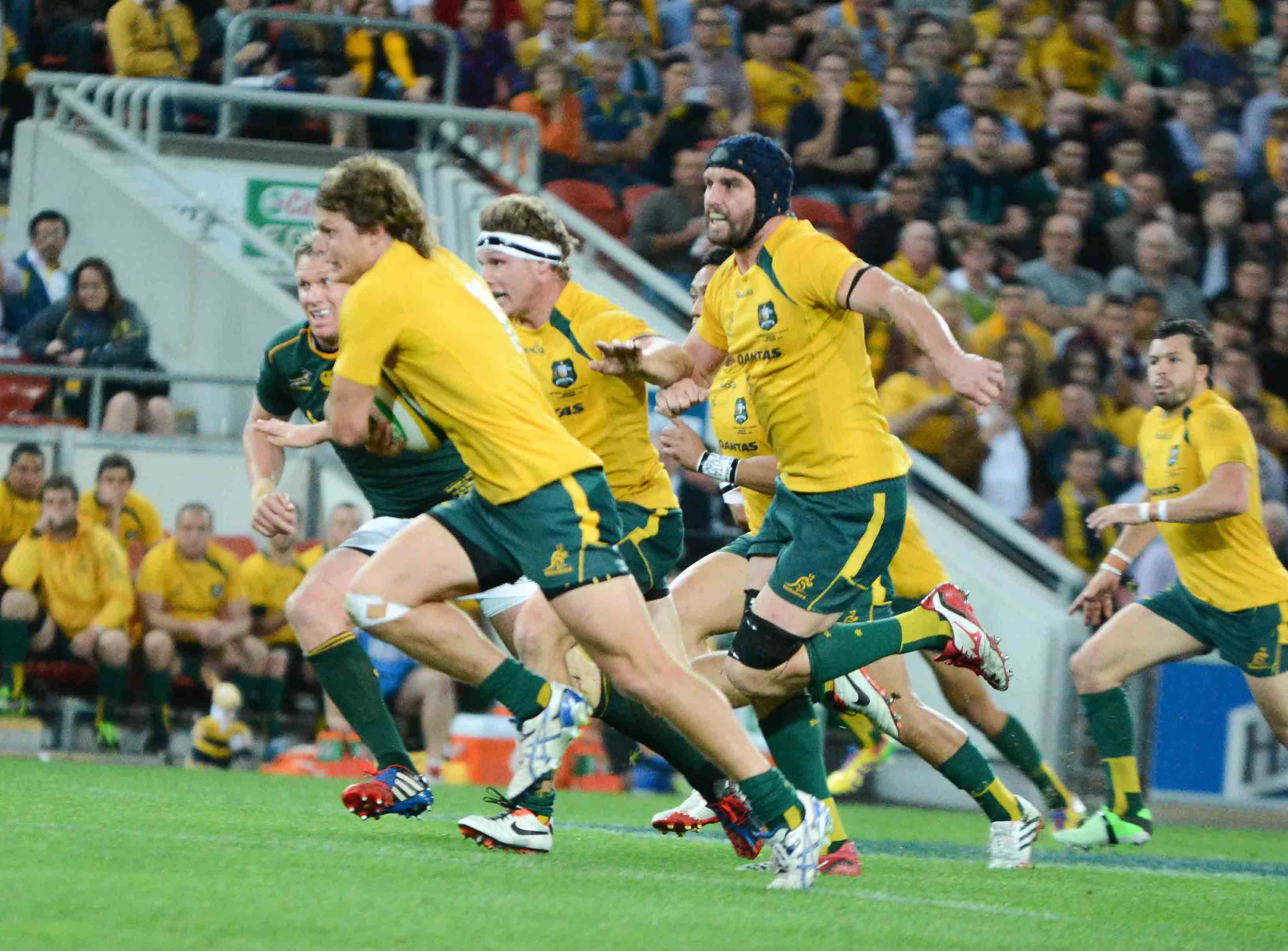 Wallabies-v-Springbok-Brisbane-2013-9-of-34