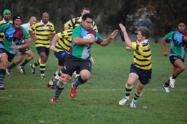 Tas Rugby Harlequins