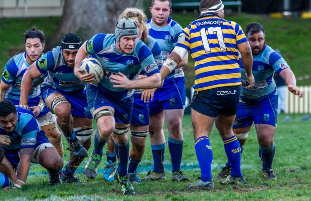 Parramatta captain flanker Andrew Cox leads a forward charge_photo by Debbie O'Connor