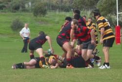 RugbySA33