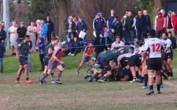 Melbourne forwards pushing near the try line