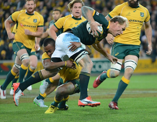 Wallabies v South Africa