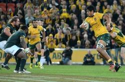 Will Skelton Australia v South Africa 2015