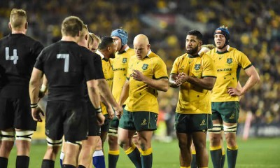 wallabies scrum sio moore