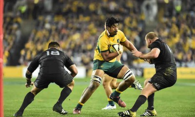 wallabies skelton