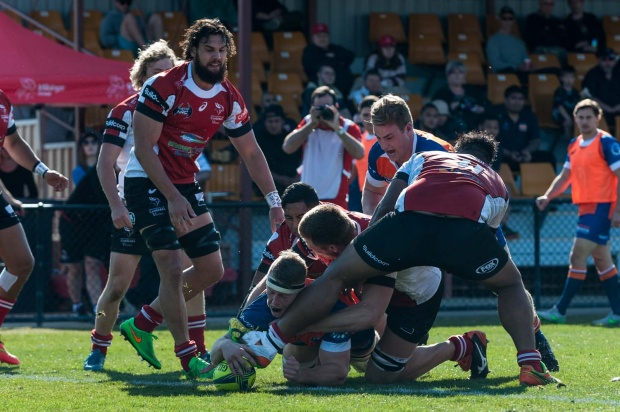 Cohen Masson scores for Greater Sydney Rams