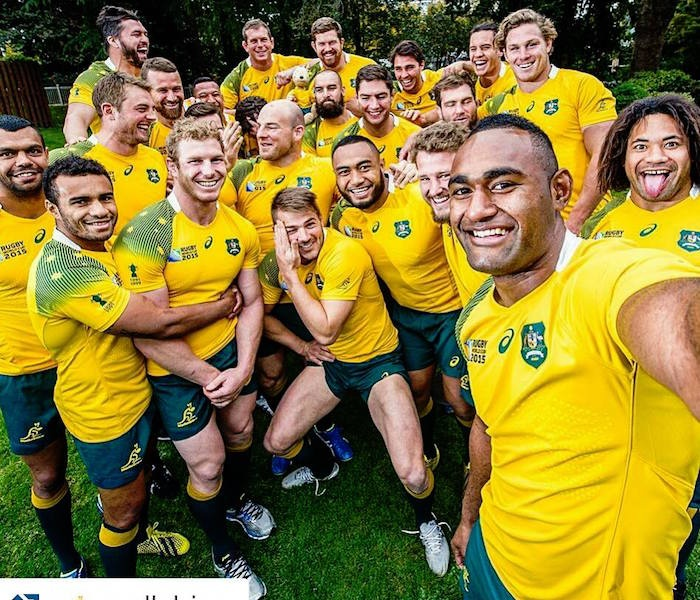 Green And Gold Rugby Gps 2018: The Rugby Year That Was