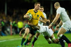 Dane Haylett-Petty has been the revelation of the series