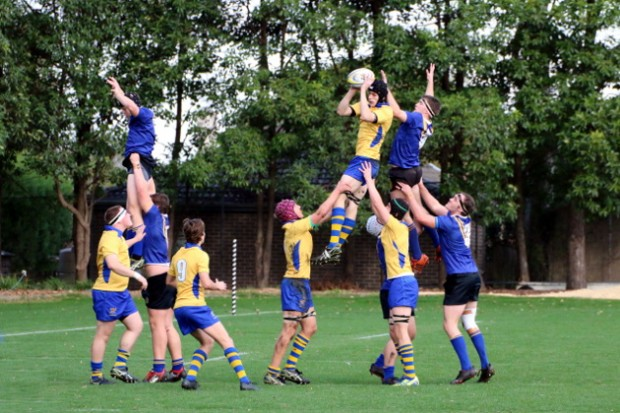 SAC win the lineout