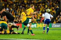 Will Genia kicking for the Wallabies vs All Blacks in Sydney 2016