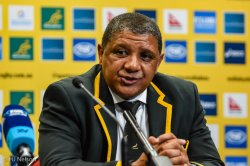 Springbok Coach Allister Coetzee at post-match press conference