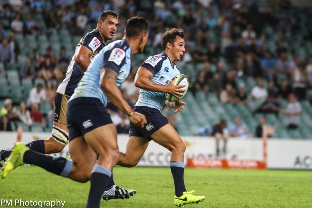 Nick Phipps in action against the Brumbies
