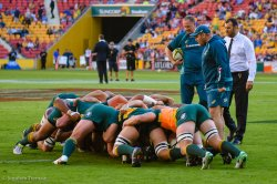 Mick Byrne, Mario Ledesma & Michael Cheika oversee the scrum practice