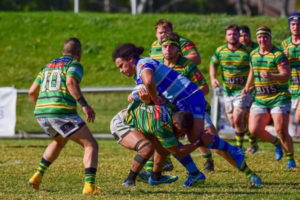 Gordon vs. Parramatta (Image Credit - Gordon Highlanders Rugby Club)