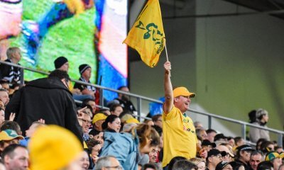 Wallaby Fans with something to cheer about