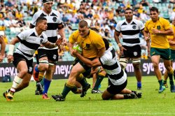 Tom Robertson-G&G-Wallabies-Barbarians-51109