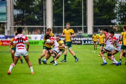 Junior Wallabies defend