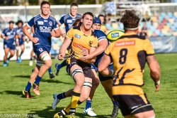 Western Force swing the ball wide