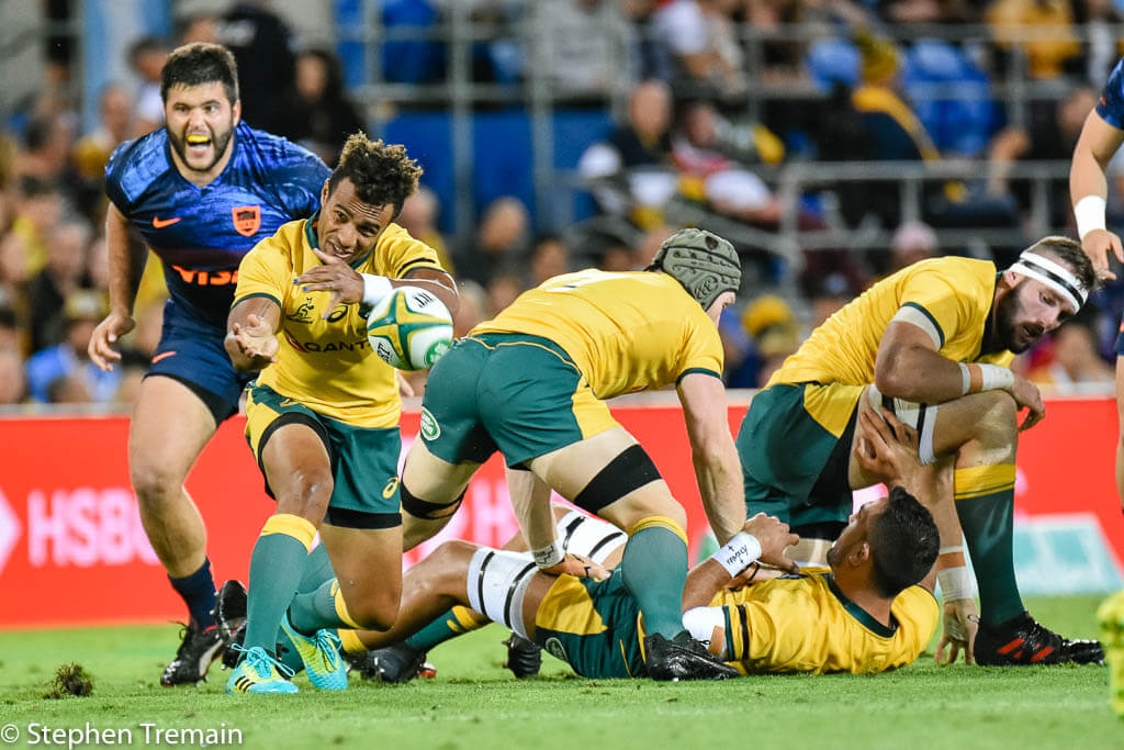 ac4ba8e0f4e Monday's Rugby News - Green and Gold Rugby