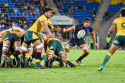 Pete Samu picks up from the back of the scrum