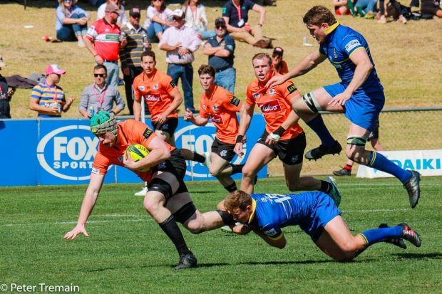 Lachlan Swinton leaps in defense Sydney v NSW Country NRC 2019 (Credit Peter Tremain)