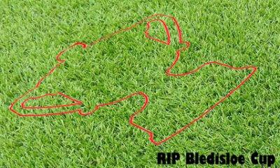 Bledisloe Outline1