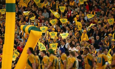 Wallabies fans celebrate a try. Photo: Cameron Spencer/Getty Images