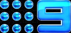 Nine2012_Glossed_Logo